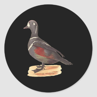 The Harlequin Duck	(Fuligula histrionica) Classic Round Sticker