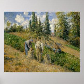 The Harvest, Pontoise Poster