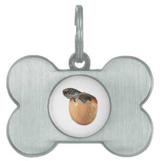 The Hatchling Pet Name Tag
