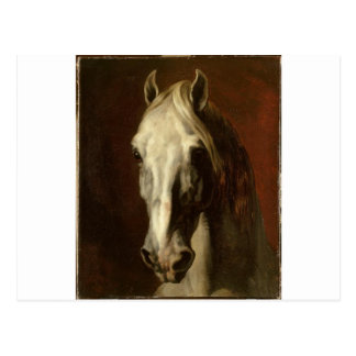 The head of white horse by Theodore Gericault Postcard