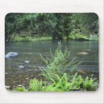The Hellyer River flows peacefully through a