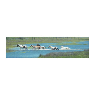 The Herd by Leslie Peppers Canvas Print