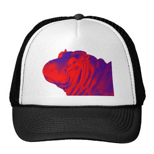 THE HIPPOS EVENING MESH HAT