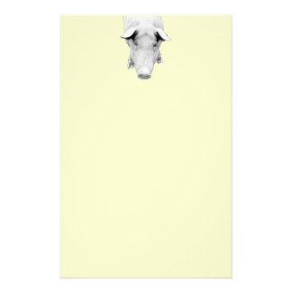 The Hog in Black and White Customized Stationery