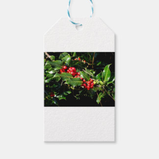 The Holly And The Ivy Gift Tags