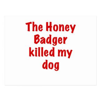 The Honey Badger Killed My Dog Postcards