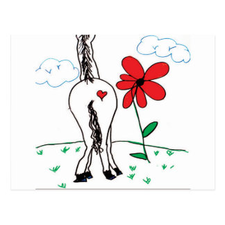 The horses pitute postcard