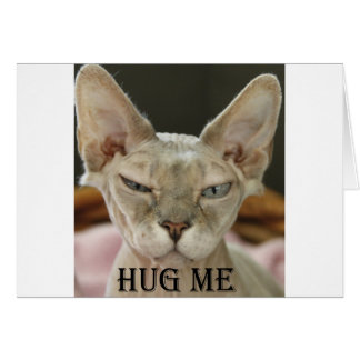 The Hug Me cat Greeting Cards