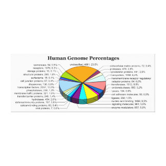 The Human Genome with Number and Percent of Each Canvas Print