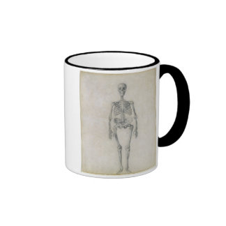 The Human Skeleton, anterior view, from the series Coffee Mugs