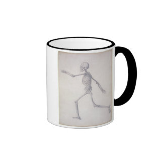 The Human Skeleton, lateral view, from the series Mugs