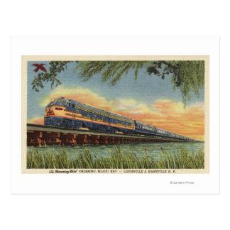 The Humming Bird Railroad Train Postcard