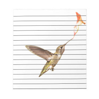 The hummingbird  and the flower notepads