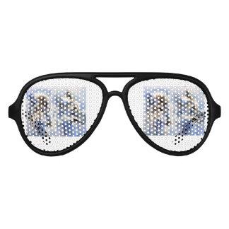 The Ice Wolf Aviator Sunglasses