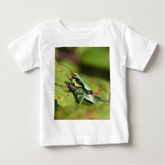 The katydid cricket Eupholidoptera chabrieri Baby T-Shirt
