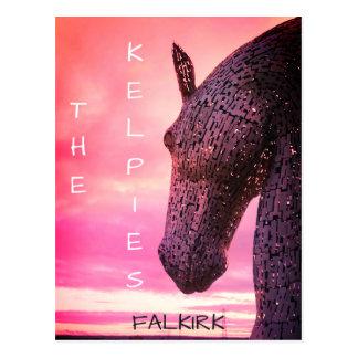 The Kelpies postcard, Helix Park, Falkirk, Scotlan Postcard