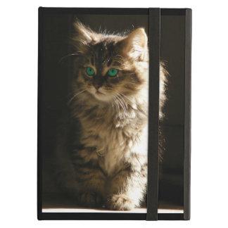 The Kitten iPad Air Case