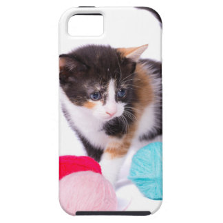 The Kitten iPhone 5 Cases