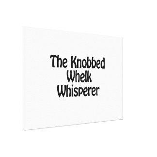 the knobbed whelk whisperer canvas print