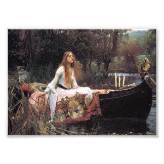 The lady of shalott painting photo