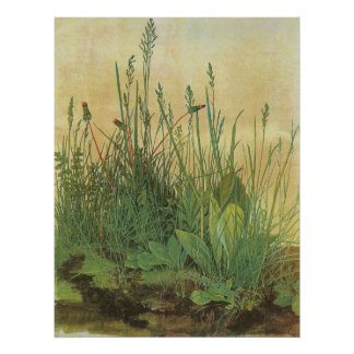The Large (Great) Piece of Turf by Albrecht Durer Posters