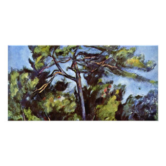 The Large Pine By Paul Cézanne (Best Quality) Picture Card