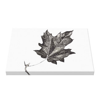 The Leaf Canvas Prints