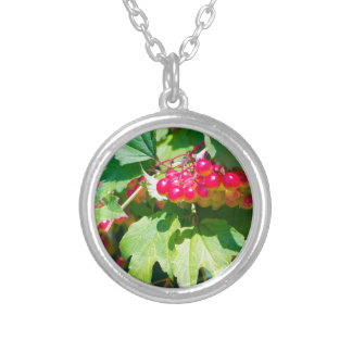 The leaves and unripe berries guelder viburnum opu silver plated necklace