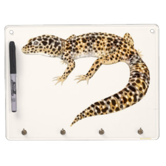 The Leopard Gecko Lizard Dry Erase Board