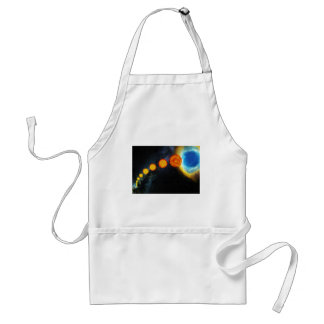 The Life of the Sun in Several Billion Years Standard Apron