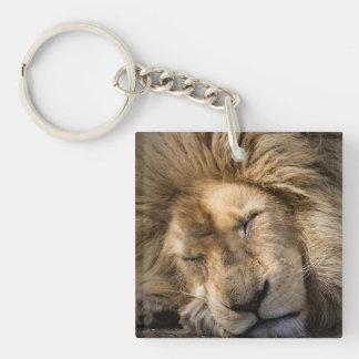 The Lion Sleeps tonight Key Ring