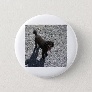 The Little Black Poodle 6 Cm Round Badge