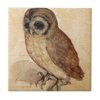 The Little Owl by Albrecht Durer Tile