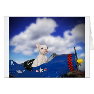 The little pilot card
