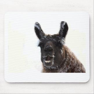 The Llama Says... Mouse Pad