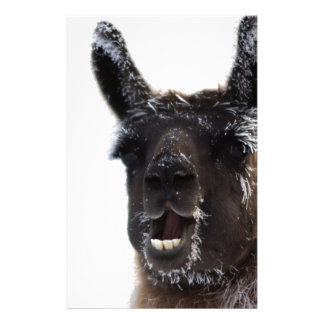 The Llama Says... Stationery