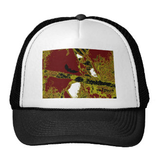 The Lone Bat by Valpyra Mesh Hats