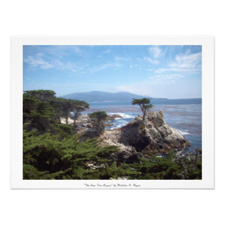 """The Lone Tree Lingers"" Monterey County Photo Print"