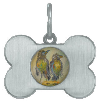 The long-awaited rain for the crows pet tag