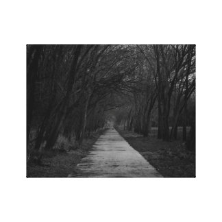 The Long Path Canvas Print