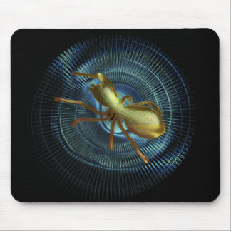 The loom black to spider in the hole to interstell mouse pads