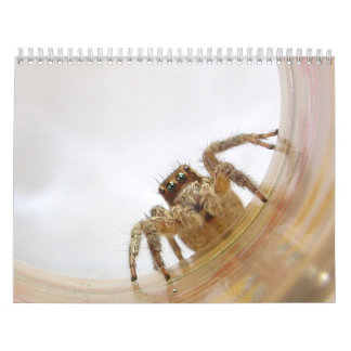 The Love of Bugs Wall Calendars