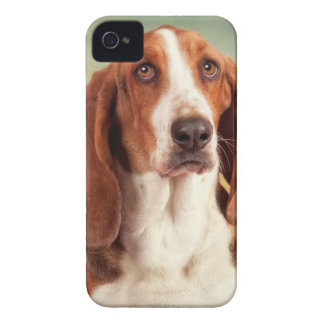 The Loveable Basset Hound iPhone 4 Cases
