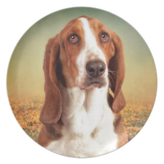 The Loveable Basset Hound Plate
