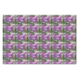 The lovely Lilacs Tissue Paper