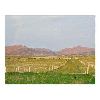 The Machair, Western Isle of Scotland Postcard