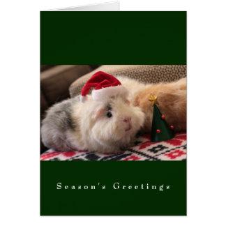 The Main Street Piggy Boys Card