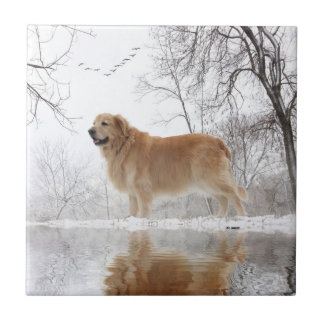 The Majestic Golden Retriever Tile