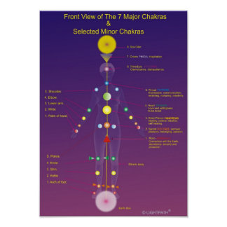 The Major and Minor Chakras Poster