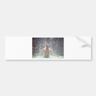 The man under the Waterfall Bumper Sticker